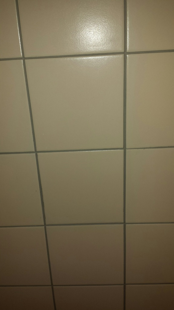 20140623_170839-CLEANED-TREATED-GROUT-576x1024